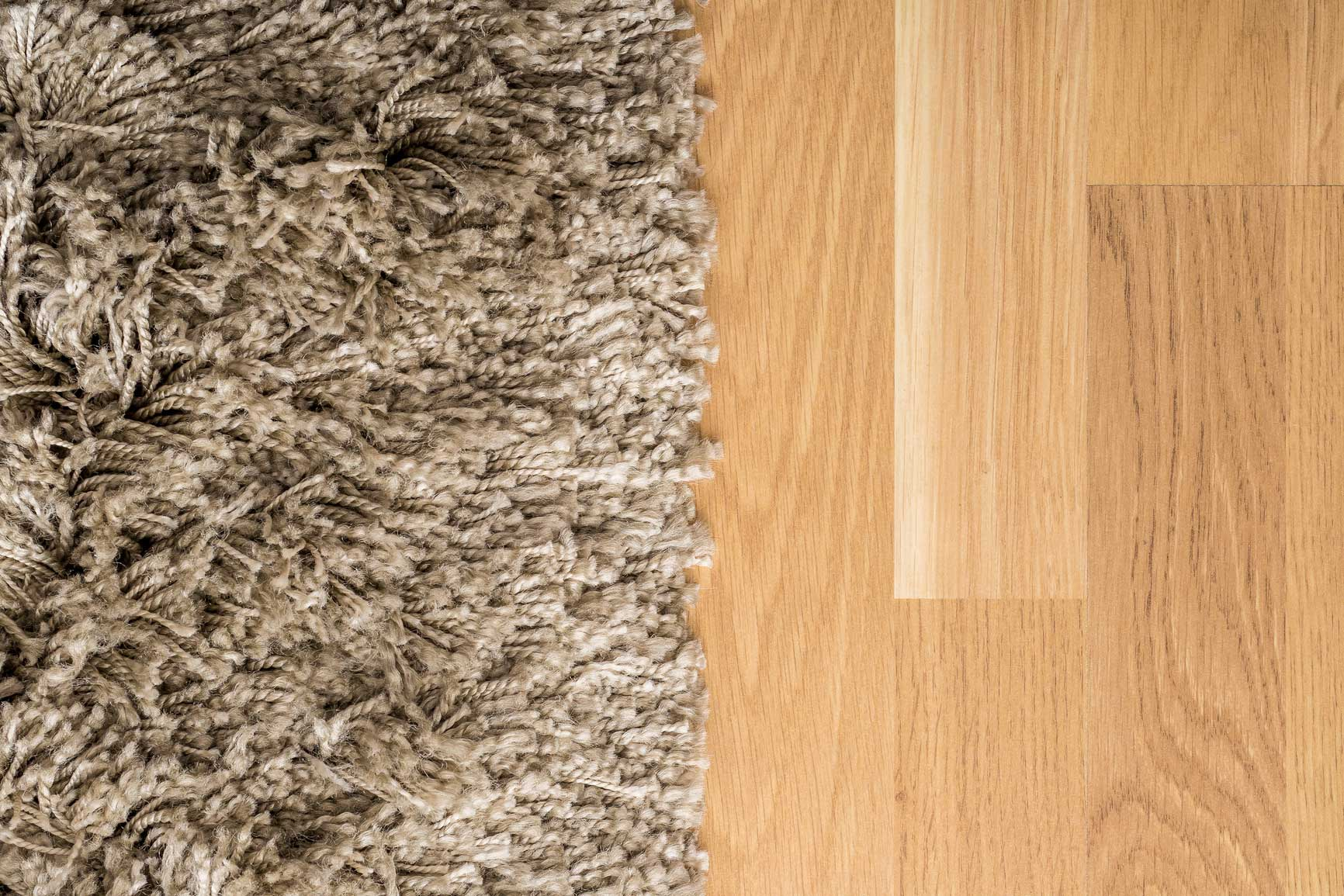 carpet-or-wood-floors